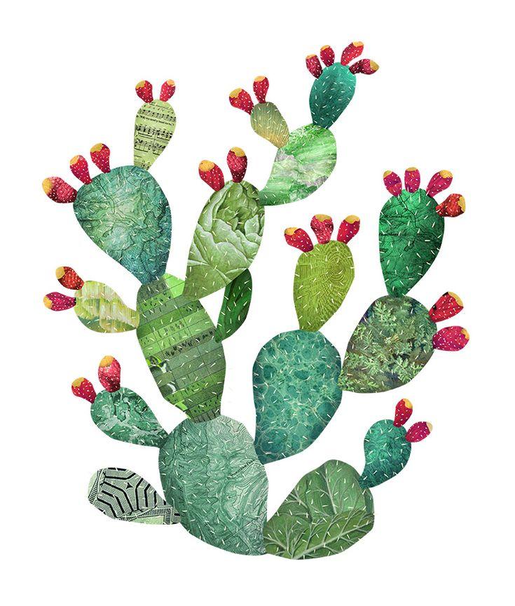 prickly-pear-01.jpg (760×893)