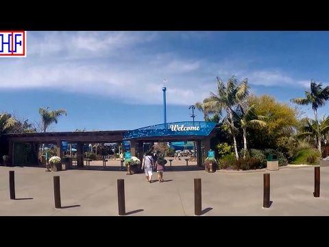 SeaWorld San Diego travel guide  - HipFig Travel Guides