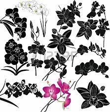 1000+ images about Orchid embroidery on Pinterest ...