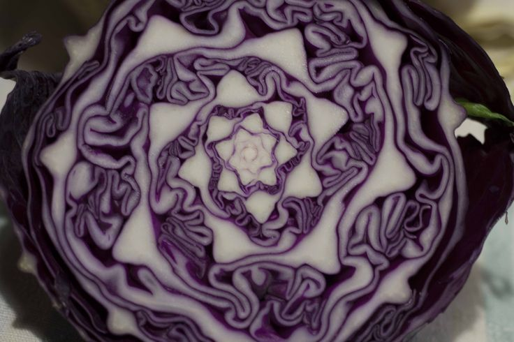 Gli alimenti forniti dalla natura sono degli strumenti molto potenti, utili a proteggere il nostro corpo da malattie e cali energetici. Ecco le migliori proprietà del cavolo:  1 Utile nelle diete 2 Supporta la concentrazione 3 Prezioso per la pelle 4 Disintossica il corpo 5 Previene il cancro 6 Regola la pressione 7 Contro il mal di testa 8 Come antinfiammatorio 9 Rafforza il sistema immunitario