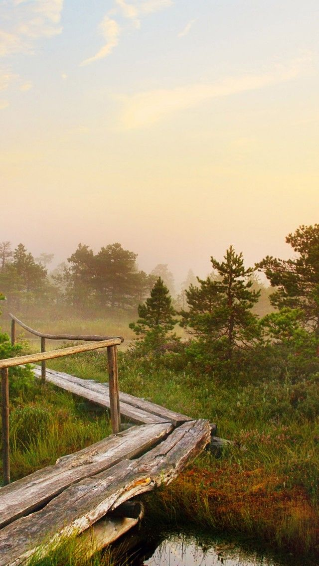Hd Phone Wallpapers Fall Beautiful Scenic Latvian Morning Hd Iphone Wallpapers
