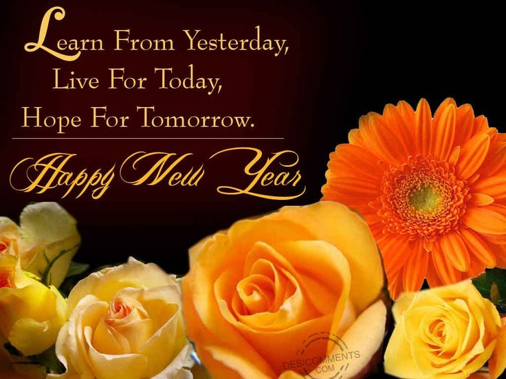 Image result for happy new year photos
