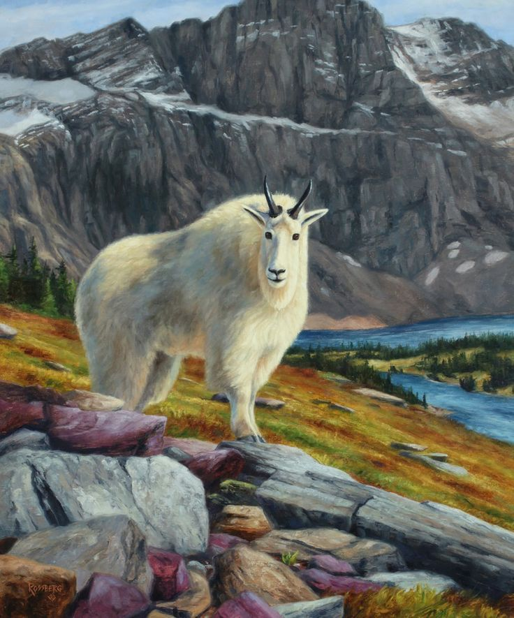 Mountain goat painting by Cliff Rossberg | Art - Wildlife ...
