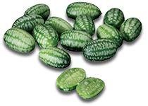 Legumes Miniatura - Pepquiño® - Catálogo de Produtos - FIEL - Importação e Exportação de Frutas e Legumes