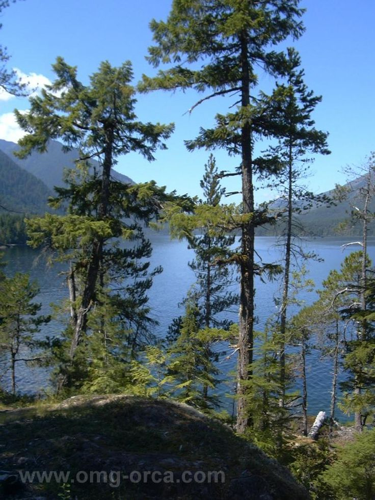 The views are spectacular from anywhere on Sproat Lake. Photo courtesy of ORCA Marketing Group.