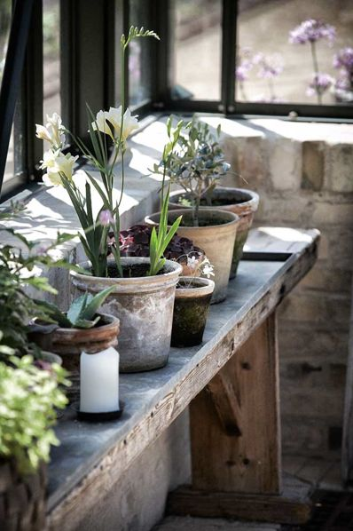 Distressed pots. | #greenhouse
