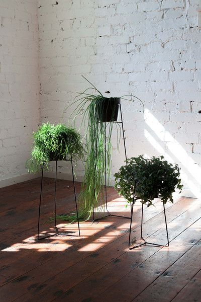 Pot Plant Stands - Black