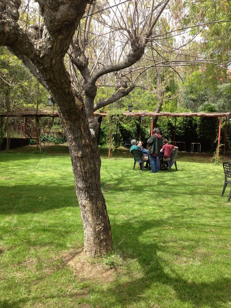 El patio del Restaurante es como los patios de toda la vida, parece que pertenece a otra época.