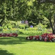What Is the Best Grass Seed for Shade? | eHow