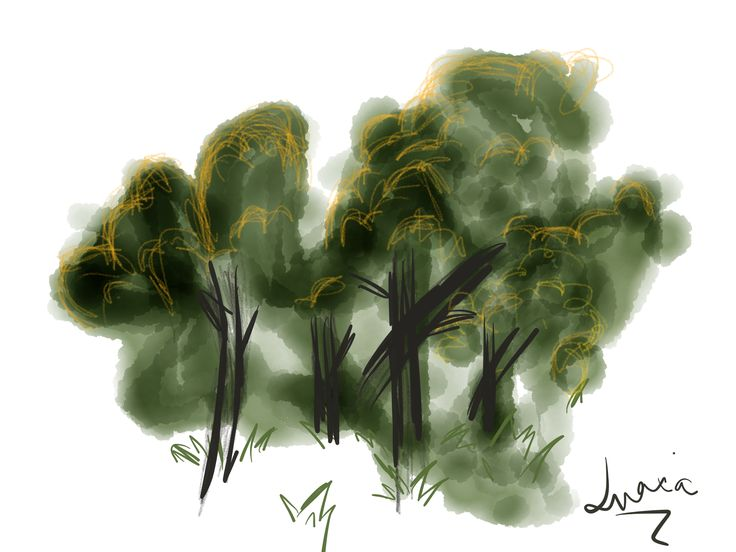 Drawing an abstract forest :)