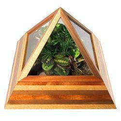 """Сердечник Deco """"Пирамида Террариум"""" принимает крытый садоводства на новый уровень роскоши и великолепия.  Построенный с 3 вариантами лиственных пород: Белый дуб, красное дерево, и черный орех."""