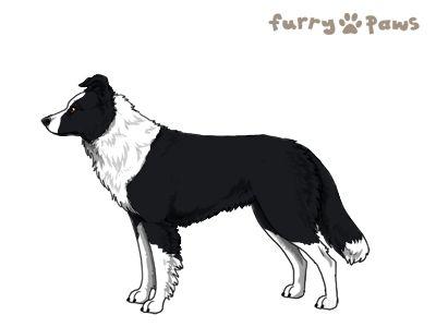 Furry Paws // JPnH James Blink's Kennel