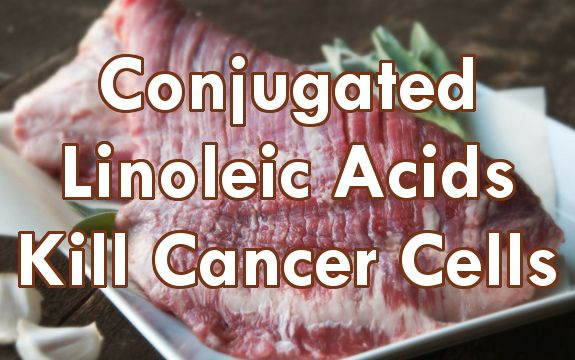 Numerous journals report that conjugated linoleic acids (CLAs) possess anti-cancer properties, halting prostate, breast, and other cancers in their tracks.