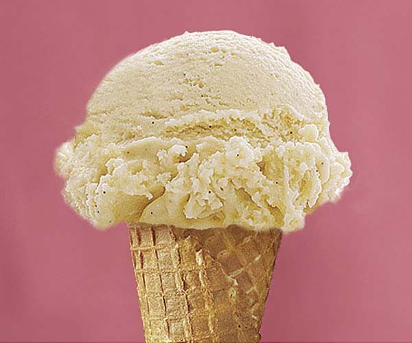 Double Vanilla Bourbon Ice Cream recipe