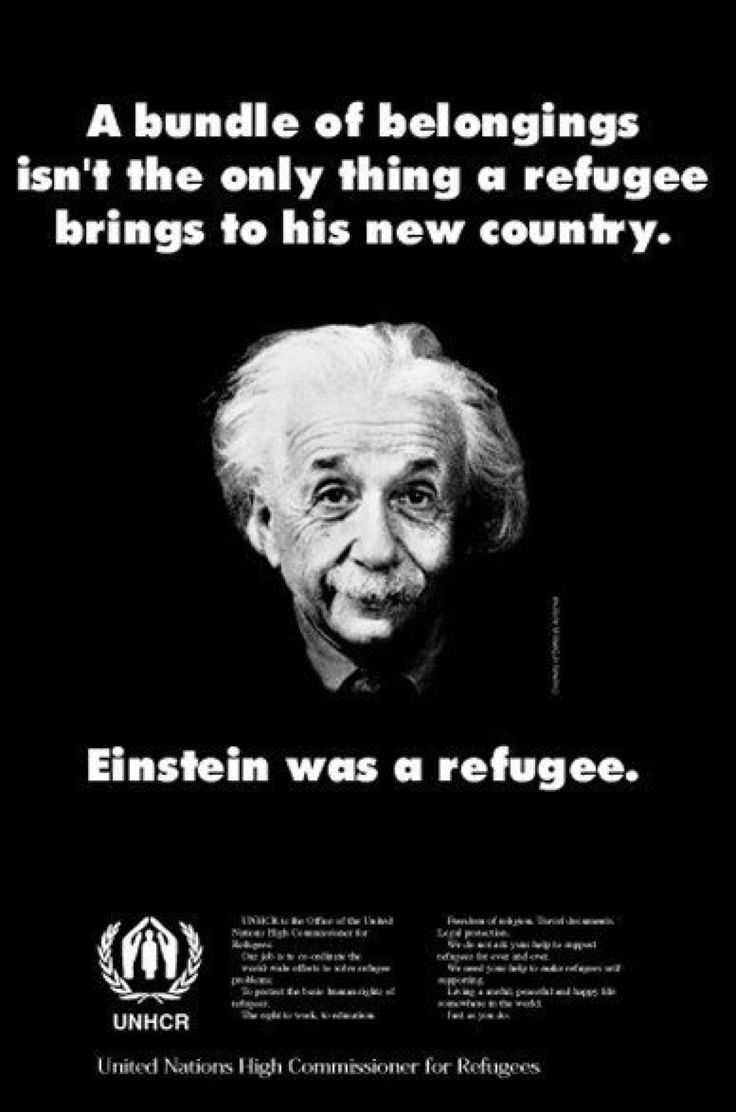 Refugee Quotes 37 Best Wise Words Images On Pinterest  Wise Words Coffee Time