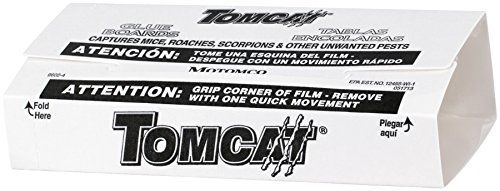 """Tomcat Glue Boards (Captures Mice and Other Household Pests, Eugenol Formula, 4-Pack)   Tomcat Glue Boards (Captures Mice and Other Household Pests, Eugenol Formula, 4-Pack) """"TOMCAT"""" GLUE BOARD WITH EUGENOL * 4 pack * Professional strength * Unique glue board with no ridges for insects to crawl over * Non-toxic and safe to use in sensitive areas * Can be used flat or folded into a covered trap * Captures mice, roaches, insects, scorpions and spiders * Carded  http://www.thelawngard.."""