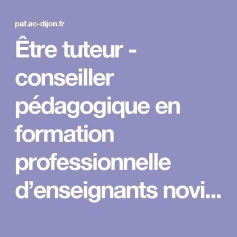Être tuteur - conseiller pédagogique en formation professionnelle d'enseignants novices - Conférence de Sébastien CHALIES - Formation des personnels de l'académie de Dijon