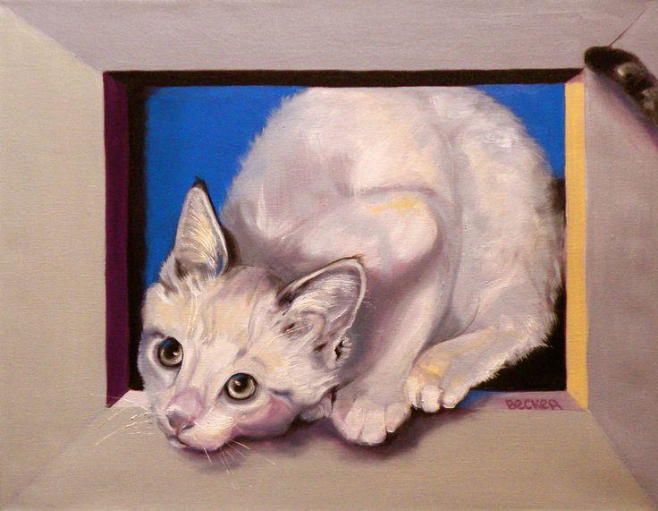 Curiosity  ~ Susan Becker