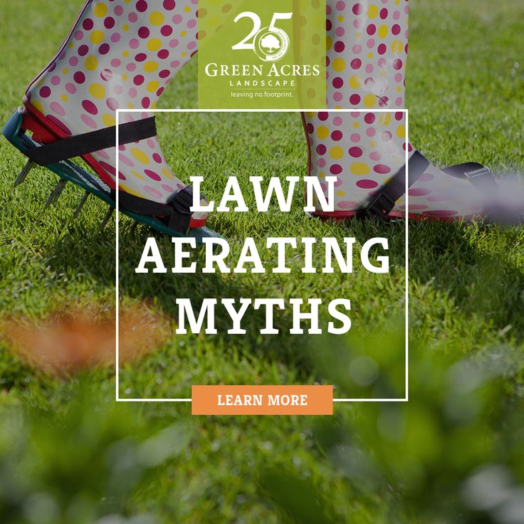 Lawn Aerating Myths - When, How, And Why To Aerate Your Lawn