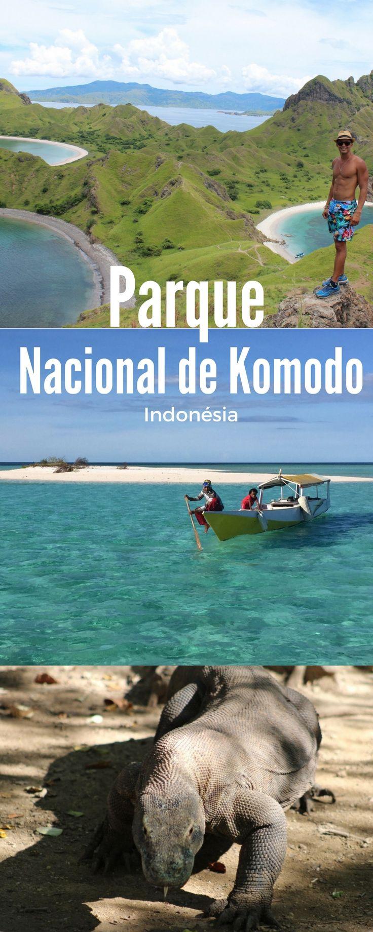 Paisagens exuberantes, dragões da era pré-histórica, ilhas paradisíacas, e até praia de areia rosa, uma das 7 praias de areia rosa do mundo. Tudo isso e muito muito mais no Parque Nacional de Komodo, na Indonésia.