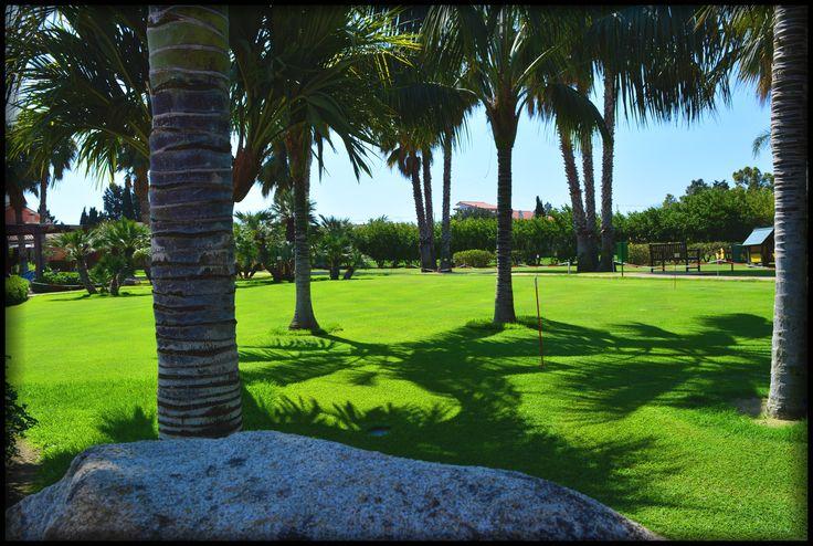 #minigolf #golf #golfing #lovegolf #lantanalovers #lantanaresort