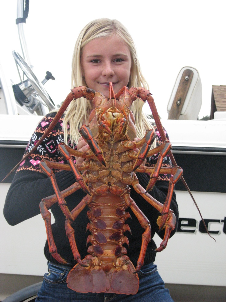 Little Girl Big 8 lb California Spiny Lobster | FISHING ...
