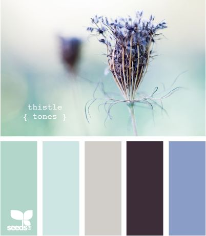 Thistled Tones by Design Seeds