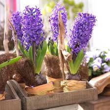 Znalezione obrazy dla zapytania piekne kompozycje kwiatowe na stoły