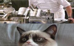 Angry Cat Meme Titanic About