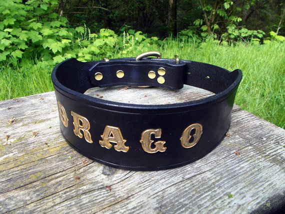 Large Dog Collar Engraved Dog Collar Gold Name Dog by HiHorseRanch