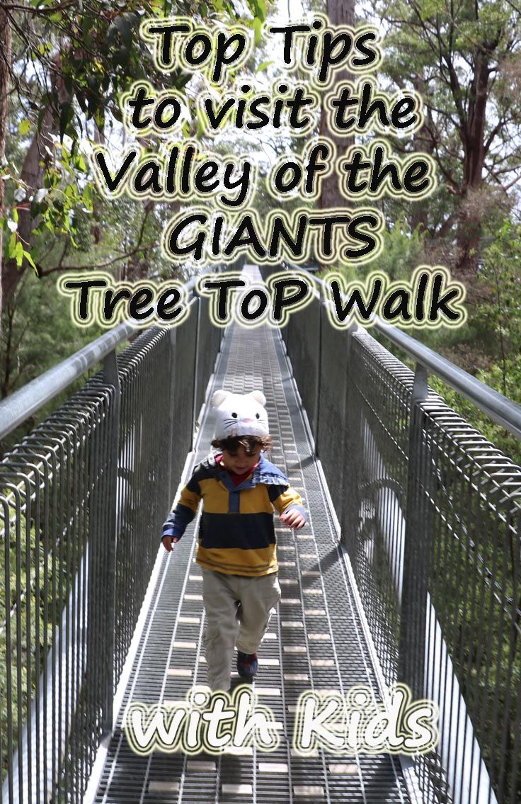 top tips to visit the Valley of the Giants Tree Top Walk with Kids. #familytravel
