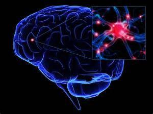 november, 2014 Autisme Spectrum Stoornis , Israël , Psychologie ...