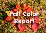 scenic fall color drive report