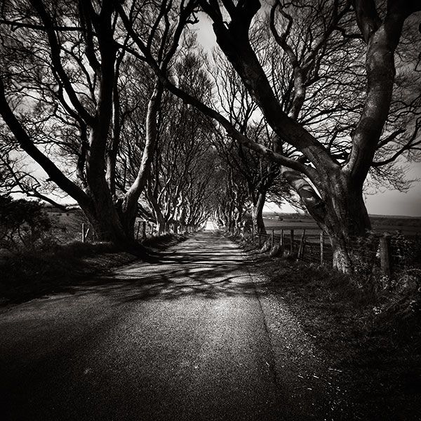 Xavier Rey Photographies Ireland B & w photographs of