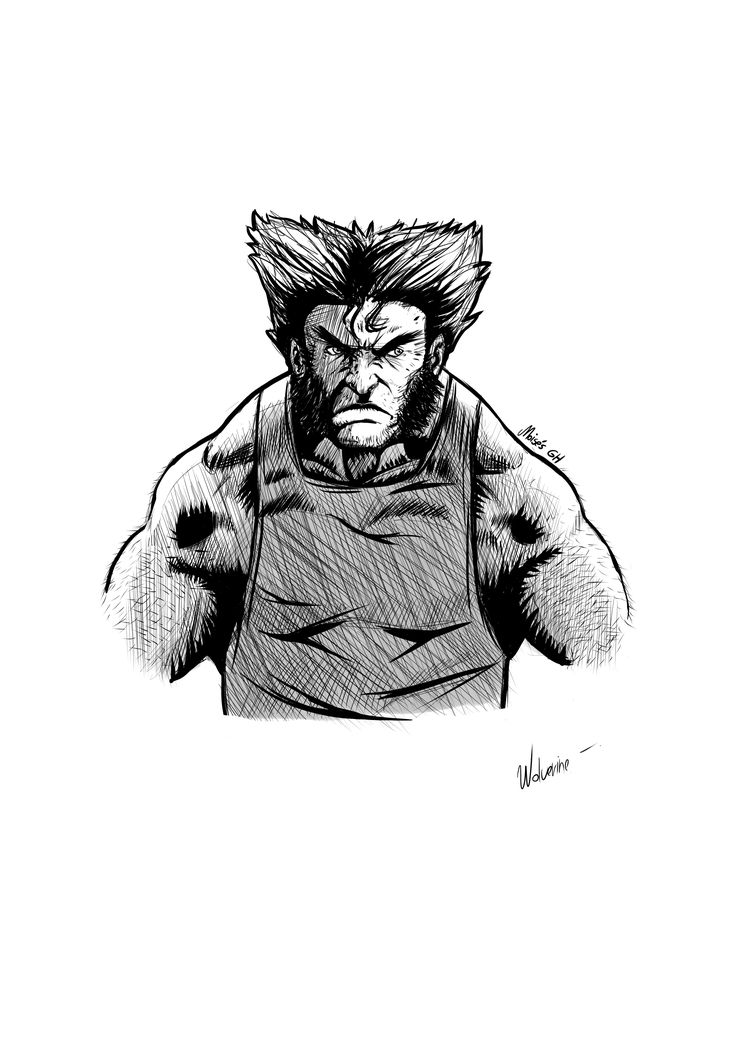 wolverine or logan, echo por mi ( sin referencia)