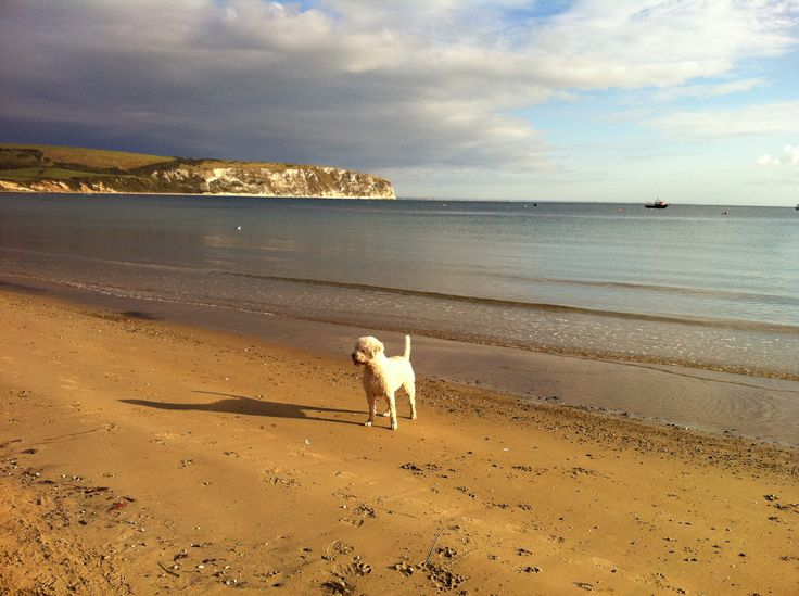 Local beach on the day I picked up the keys from the estate agent (late Oct 2011)