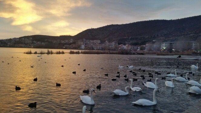 Λίμνη Ορεστιάδα - Καστοριάς (Lake Orestiada - Kastoria) in Καστοριά, Καστοριά