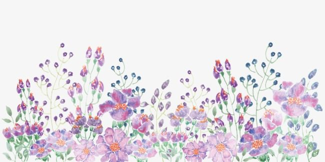 Hd Watercolor Flowers Png Watercolor Flowers Watercolor Art