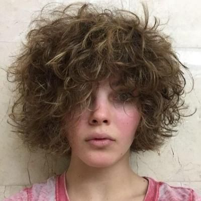 Camren Bicondova Short Curly Casual Hairstyle