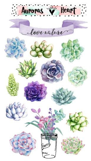 Boho succulent plants watercolor planner stickers by AurorasHeart