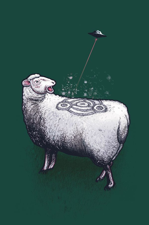 Animals Are Kewl: Amazing Art, Real Illustrations, George Le, Animal Instinct, Illustrations Famous, Humor Illustrations, Adorable Animalist, Animalist Character, Crop Circles