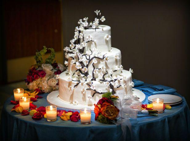 Blossoming tree wedding cake (Photo by Jeff Kolodny Photography)