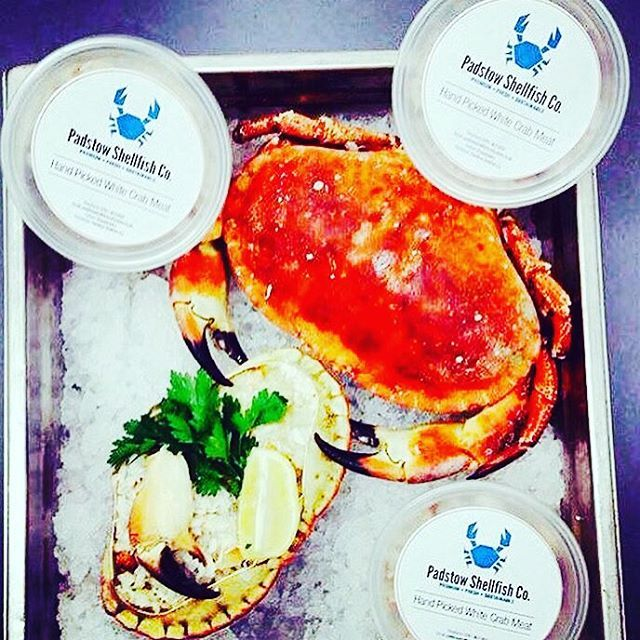 @ministry_of_fish did some brand creative work for our client, Padstow Shellfish Co. Check them out for the very best sustainable crab and lobster in Cornwall.  #catchoftheday #creativebranding #logo #branding #cornwalluk #padstow #shellfish #creativemarketing #marketing