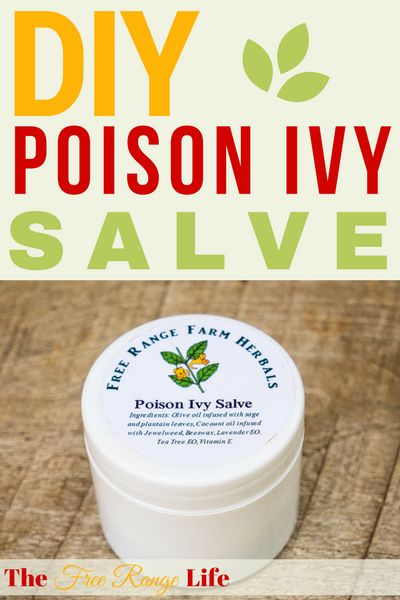 Are the summer itches getting to you? Try making this Poison Ivy Salve to help soothe your insect bites, poison ivy and other itchy spots!