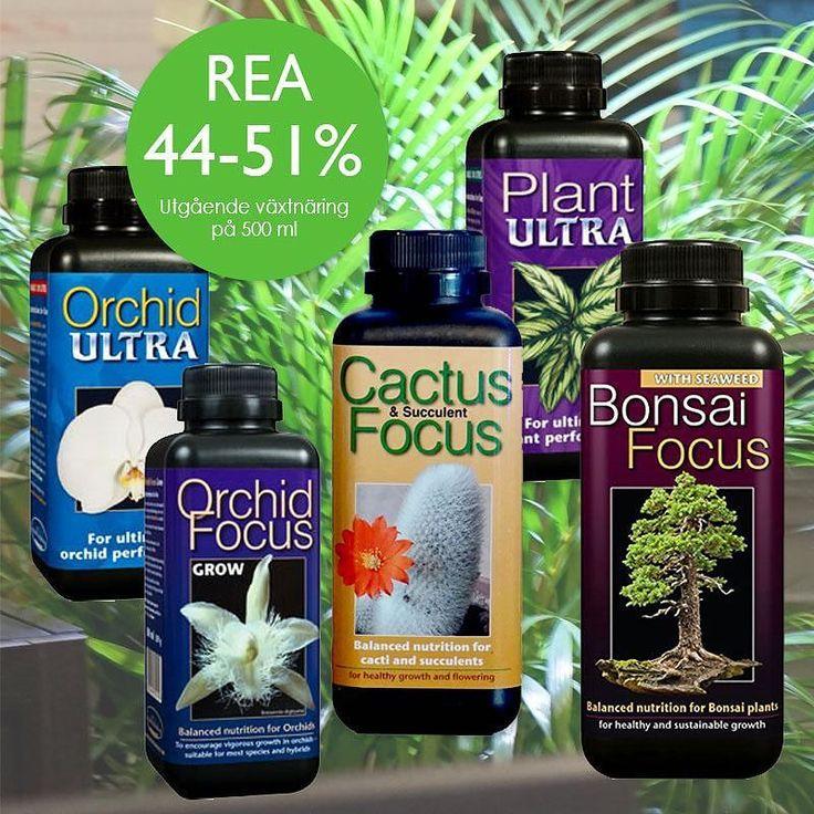UTGÅENDE PRODUKTER! På våra växtnäringar på 500ml får du upp till hela 51% rabatt! Kolla in i vår Outlet & REA under Tema & Paket på hemsidan!  #växtnäring #rea #utgåendeprodukter #näring #växtskötsel #odling #wexthuset #outlet #inomhusodling #växter #krukväxter #orkidéer #kaktus #bonsai #odla #succulenter