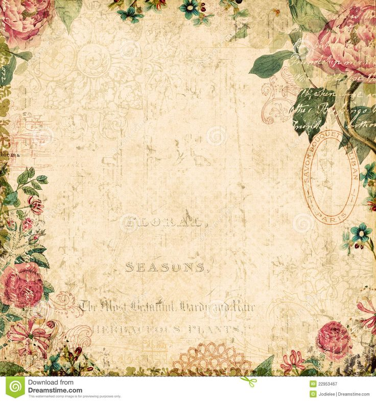 Old Paper Wallpaper: Vintage Style Botanical Floral Framed Background