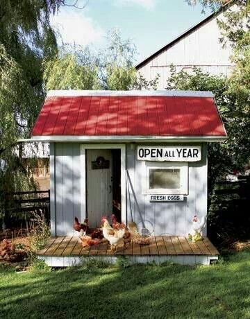 118 best images about cockadoodle coops on pinterest for Cute chicken coop ideas