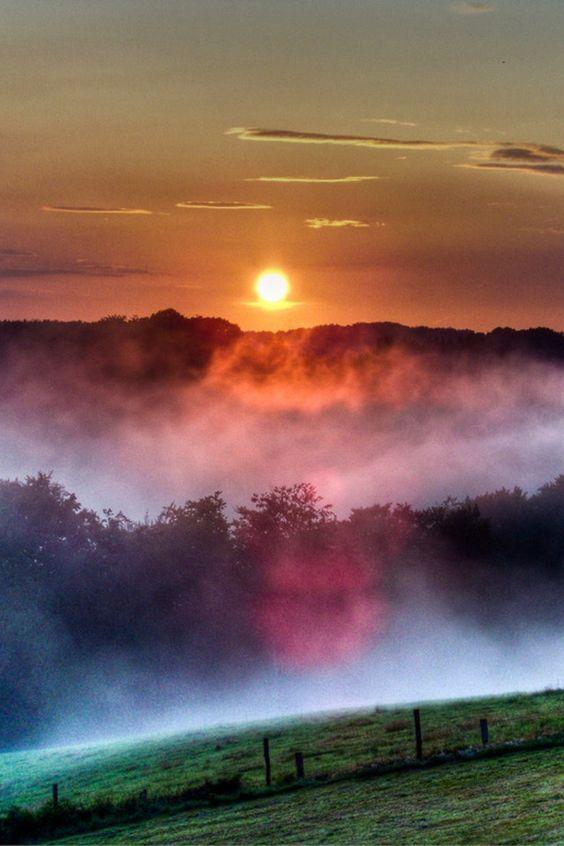 Beauteous view   | nature | | sunrise |  | sunset | #nature  https://biopop.com/