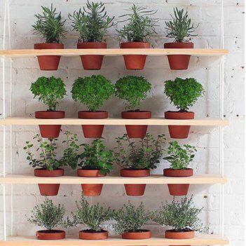 Créer un jardin d'intérieur ou un mini-potager - Marie Claire Idées