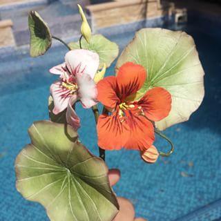 {Amazing handmade Nasturtiums by @kal.look}